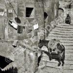 Pitigliano, 1935