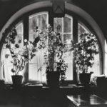 Claviere, 1934